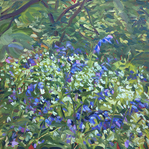 Bluebells and wild garlic by Stuart Nurse